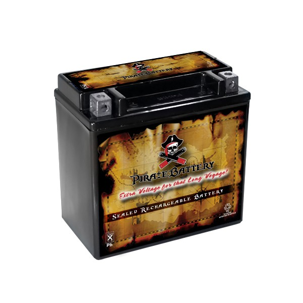 Chrome Battery YTX14L-BS Motorcycle Power Sports Battery for Harley-Davidson 1200cc XL XLH Sportster 2007 at Sears.com